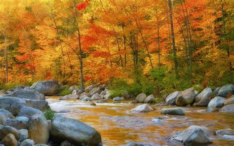 Wallpaper For Free by Wallpaper Wiki Free Autumn River Photo Pic Wpb0015713