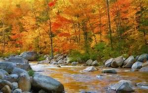 Nature Autumn River Rocks Wallpaper Hd : Wallpapers13.com