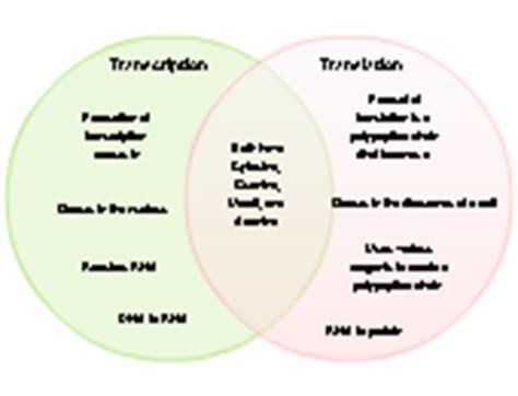 venn diagram exles venn diagram templates creately
