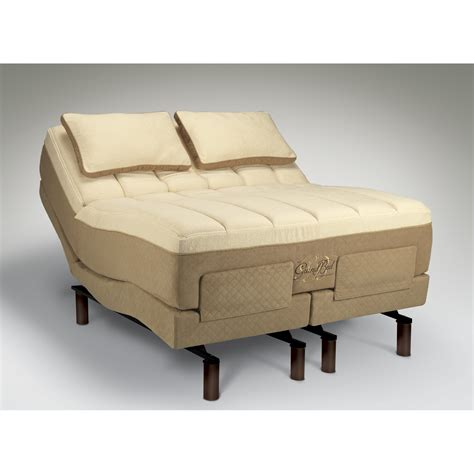 Tempur Pedic Beds by Tempur Pedic Tempur Ergo Adjustable Bed Reviews Wayfair