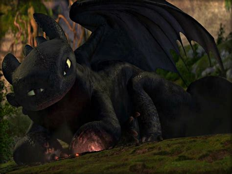 toothless wallpaper  wallpapers adorable wallpapers