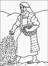 Parable Coloring Sower Pages Seed Mustard Bible Children Seeds Ebibleteacher Parabole Parables Sheet Version Chart Sunday Preschool Colouring Sheets Sowing sketch template