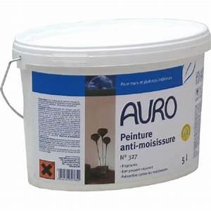 Anti Humidité Mur : produit anti moisissure mur taches d 39 humidit et ~ Edinachiropracticcenter.com Idées de Décoration