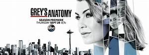 Grey's Anatomy ABC TV show: ratings (cancel or season 15?)