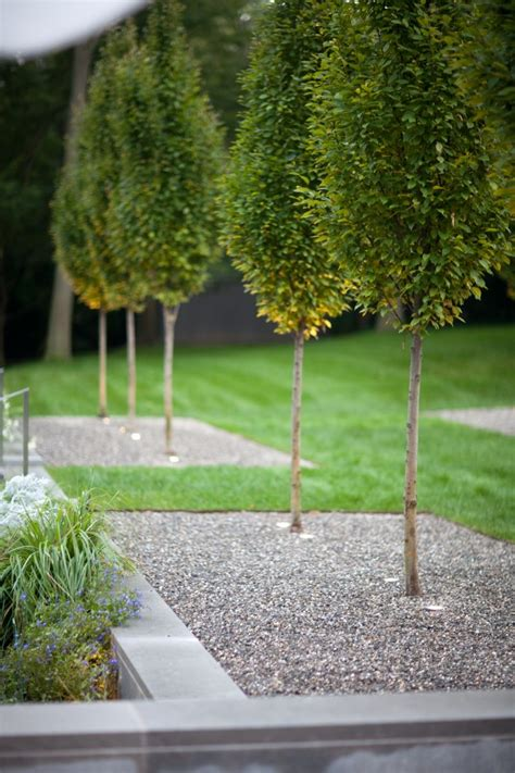 Modernen Garten Anlegen by Kiesbeet Anlegen Stilvoller Garten Im Modernen Stil