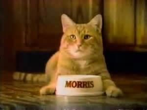 morris the cat 1984 9 lives cat food presents morris