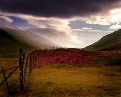 Scottish Scotland Heather Landscape Highlands Wallpapers Landscapes