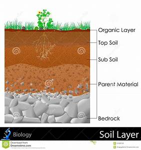 Layer Of Soil Stock Illustration  Illustration Of Diagram