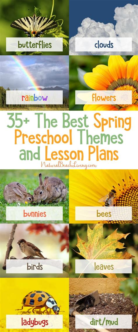 35 the best preschool themes and lesson plans 467 | 93a124ca5ff2e49c660426bf88b87c49