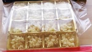 Gefrierbeutel Mit Reißverschluss : klein gehackten knoblauch einfrieren frag mutti ~ Eleganceandgraceweddings.com Haus und Dekorationen