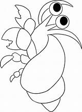 Crab Coloring Hermit Pages Simple Print Animal Drawing Animals Cartoon Printable Colouring Sheet Clip Sea Nemo Getdrawings Cliparts Whale Clipart sketch template