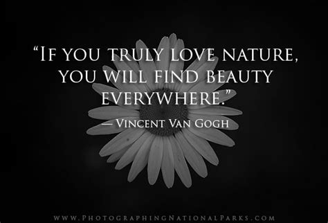 nature photography quotes photographing national parks
