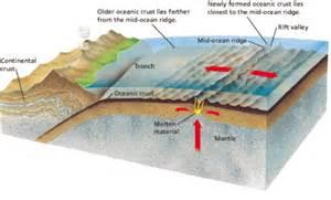 plate tectonics mrs tarr s science classes