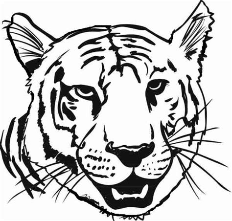 43+ Tiger Coloring Pages Easy Pics
