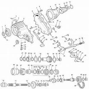 Ring And Pinion Gears  Axles And Axle Shafts  Drivetrain