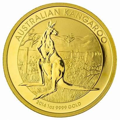 Gold Kangaroo Australian Nugget Coins Coin 1oz