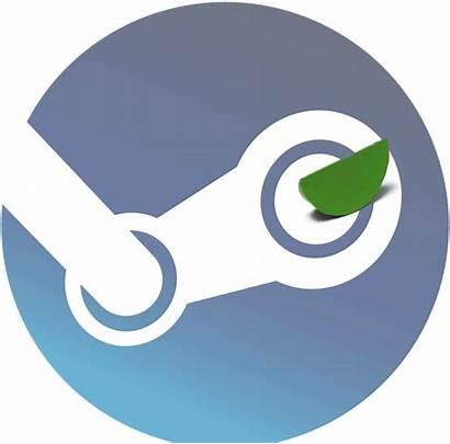 Steam Games Them Studio Entry Unfolds