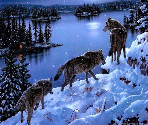 Animal Planet Desktop Wallpaper - cool pets animal planet desktop images animals