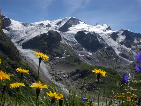 1000 Images About Swiss Alps On Pinterest Switzerland