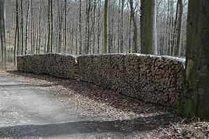 Holz Lagern Im Freien : bioenergie wikipedia ~ Whattoseeinmadrid.com Haus und Dekorationen
