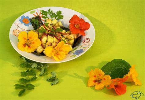 salade de courgettes les recettes de sophie