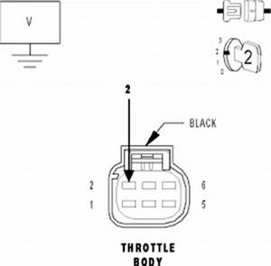 Repair guides components systems throttle position for Wire between the electronic throttle body39s connector and the throttle