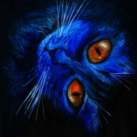 What Is Bleu by Fabulo Chat Bleu