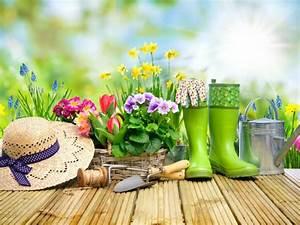 Le Bon Coin 62 Jardinage : jardinage le bon coin ~ Melissatoandfro.com Idées de Décoration