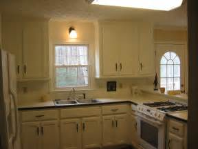 have the painting kitchen cabinets ideas for your home