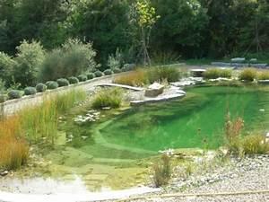 Construction Piscine Naturelle : biopiscine piscine naturelle ~ Melissatoandfro.com Idées de Décoration