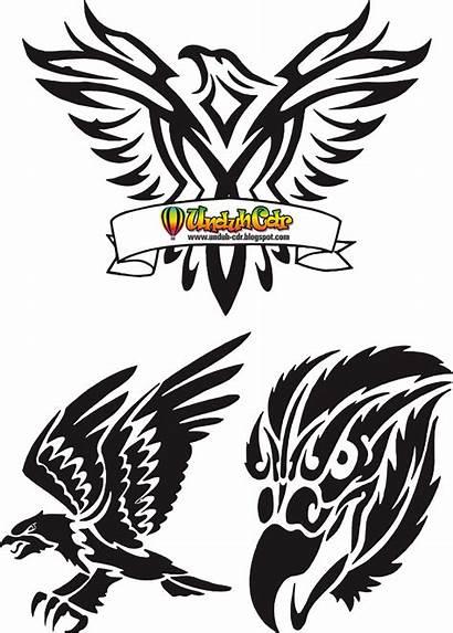 Cdr Elang Rajawali Gambar Gratis Tatto Burung