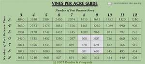 Vine Spacing Chart