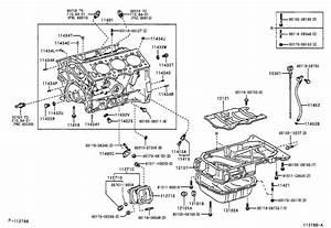 Lexus Es 330 Engine Expansion Plug