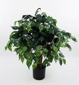 Ficus Benjamini Verliert Alle Blätter : ficus benjamini 60cm gr n da k nstlicher baum kunstbaum ~ Lizthompson.info Haus und Dekorationen