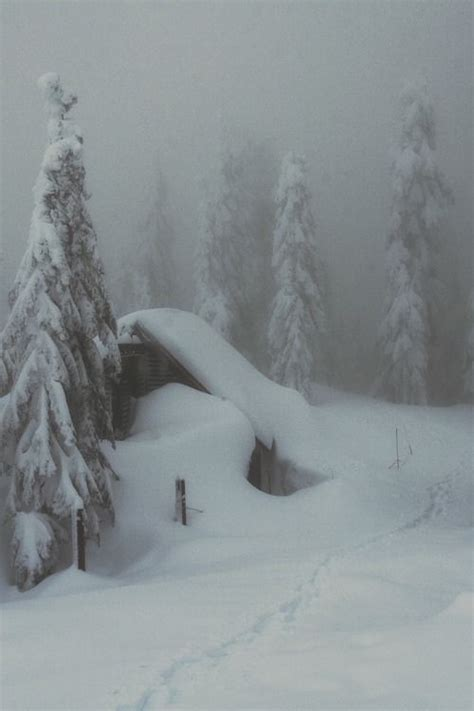 heavy winter snow pictures   images