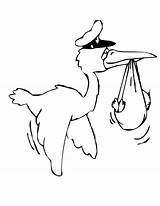 Coloring Pages Stork Bird Birds sketch template