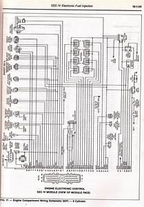 Aquatronics Ms 205 Wiring Diagram