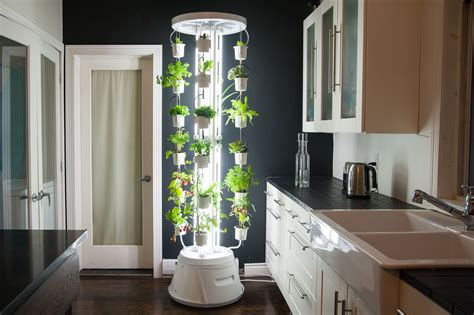 Commercial Hydroponics Systems-small Garden Ideas