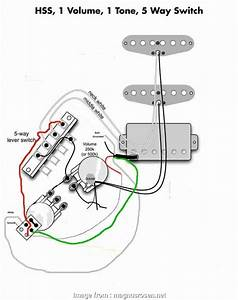 Wiring  Way Strat Switch Most Stratocaster Wiring Diagram