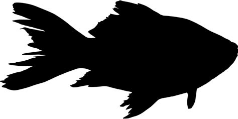 Fish Animal Silhouette · Free Vector Graphic On Pixabay