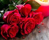 Red Rose Flowers Desktop Wallpaper