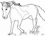 Coloring Mare Horse Miniature Designlooter Template 964px 85kb 1200 sketch template
