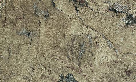 deco chambre savane les papiers peints nature maclou maclou