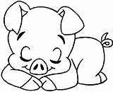 Coloring Pig Pages Animal Pigs Sleeping Animals Drawings Colouring Printable Sheets Template Kidsandcolors Patterns Para Colorir Porcos Stuffed Popular Unicorn sketch template