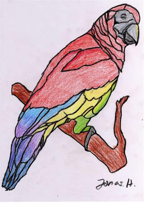 tieridee der papagei farmeramania