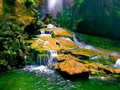 Stream Water Nature Peaceful Desktop Forest Definition