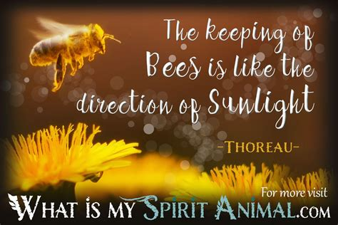 Bee Quotes & Sayings   Animal Quotes & Sayings