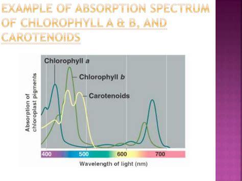 Spectrophotometer Powerpoint Presentation