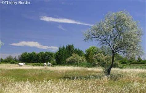 chambre d hotes rhone alpes paysages de camargue avignon et provence