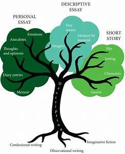 Tree Diagram Indd